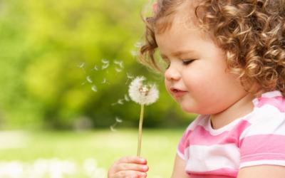 Закон о социальной поддержке детей сирот